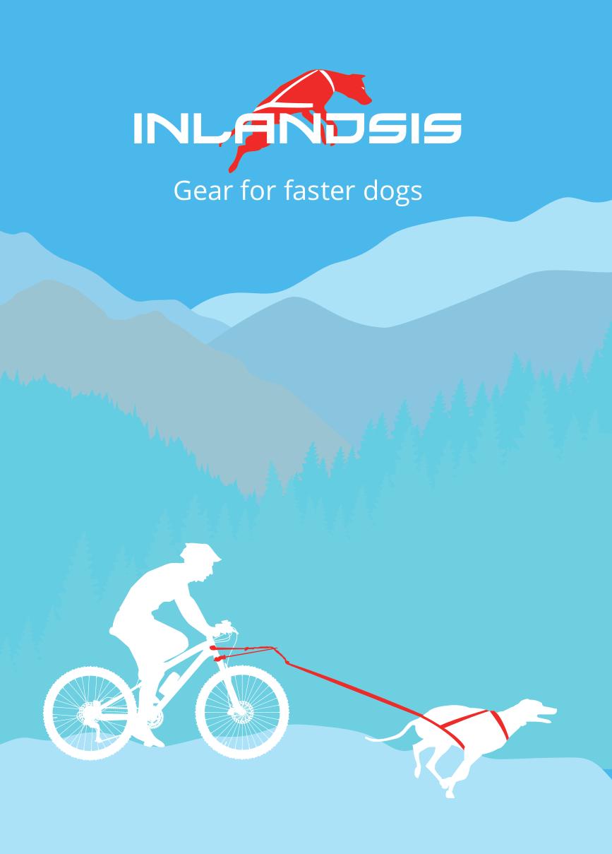 Bikejoring lifestyle visual